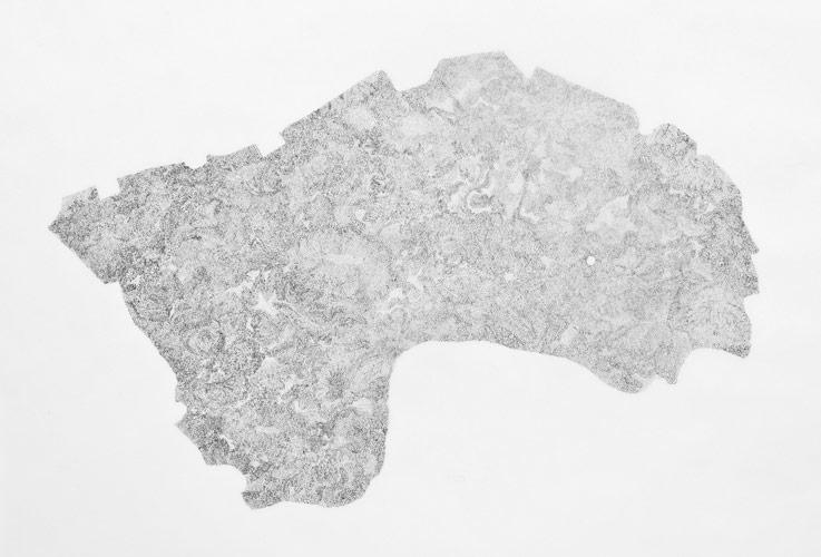 debra-scacco-drawing-06
